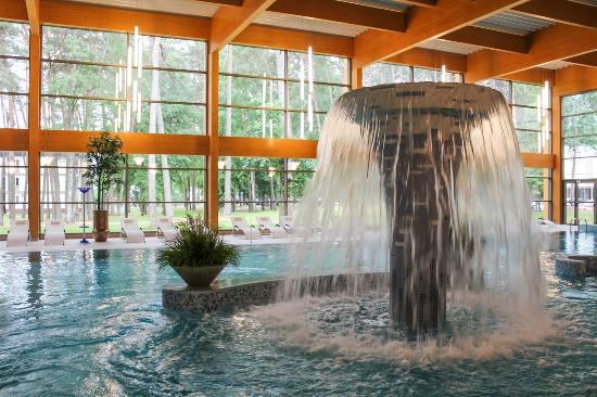 Medical SPA Eglės Sanatorija Birštonas: Swimming pool