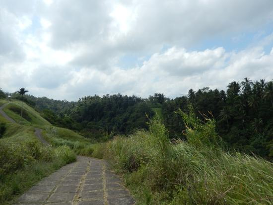 Sunset Hill: hiking path to the city