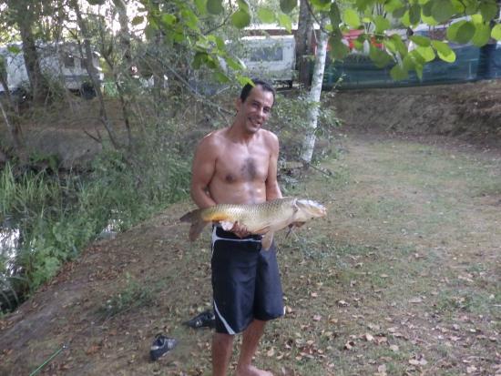 Camping Les Lacs de Courtes: Une jolie carpe qui a vite rejoint ses copines dans le lac....