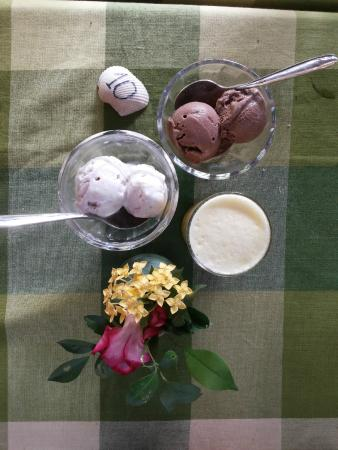 Naturellement Garden Cafe: Ice creams - coconut and chocolate coconut