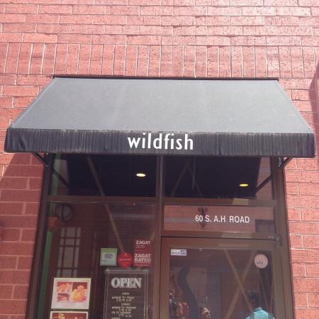 Wildfish: photo1.jpg