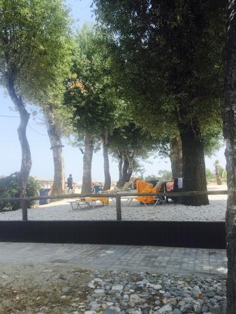 Cronwell Platamon Resort: Пляжная зона. Можно лежаки поставить и на траву.