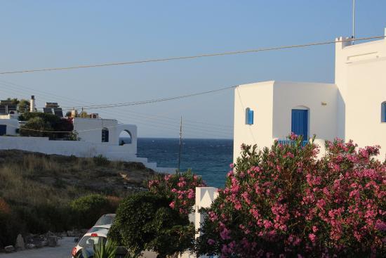 Adonis Hotel & Apartments: Vista mare dalla camera