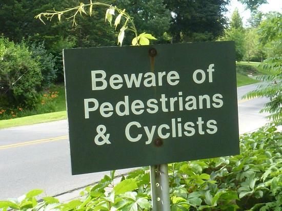 South Landing Inn: Watch out motorists!