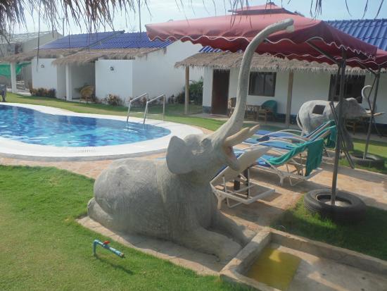 Pat Pat Guesthouse: douche de la piscine !