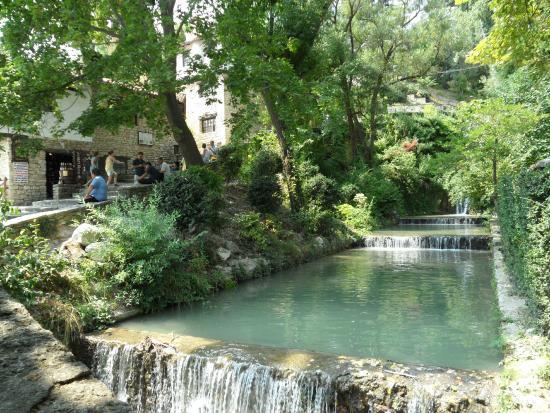Балчик, Болгария: Garden