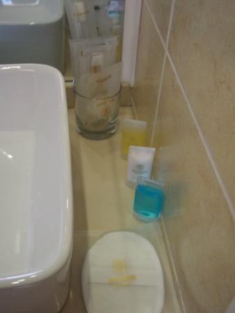 Mildom Hotel : Ванная комната