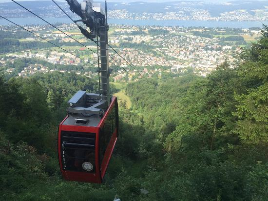 Felsenegg: View from the top