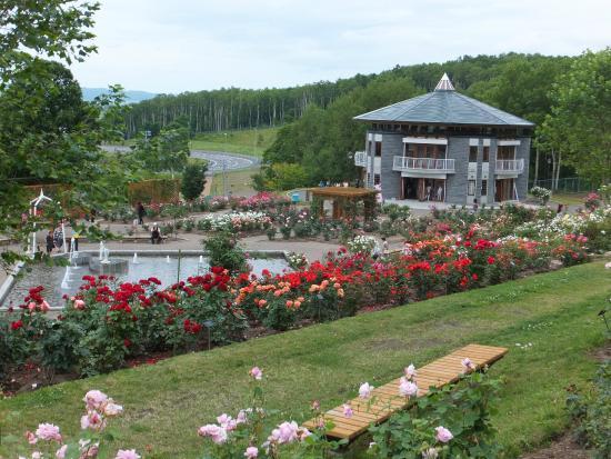 Rose Garden Chippbetsu