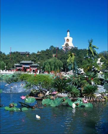 Chong Qing Hotel: парк в пекине