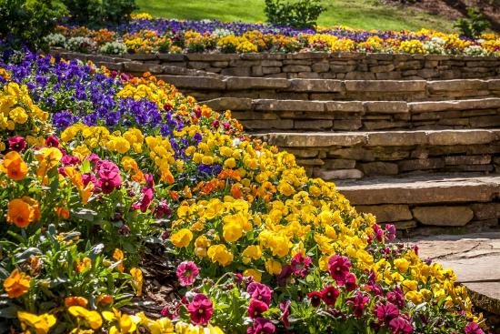 Cool Spring Flowers And Stonewaork At The Manor House Picture Download Free Architecture Designs Rallybritishbridgeorg
