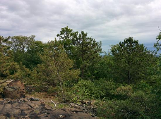 Malden, MA: Middlesex Fells Reservation
