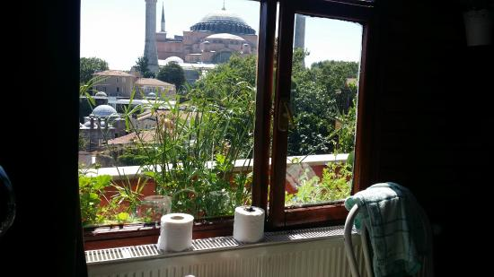 Istanbul Violet Apartments: view i wake up every morning to