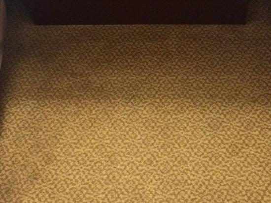 Baymont Inn & Suites Mt. Pleasant: another carpet spot - too many to post