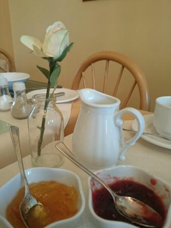 Griffin Lodge: Aspettando la colazione irlandese..