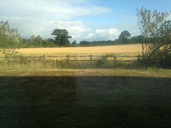 Lower Wick, UK: View from room 3