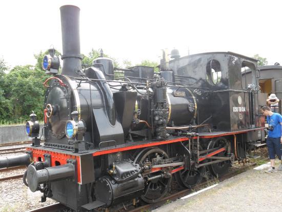 Le Chemin de Fer Touristique du Rhin: Locomotive