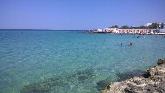 Mola di Bari Photo