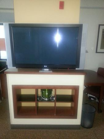 Hyatt Place Grand Rapids-South : King suite w/ pull out couch.