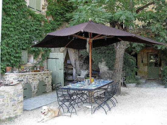 La Flor Azul: Al fresco breakfast table plus Golden Retriever! Buffet counter on left.