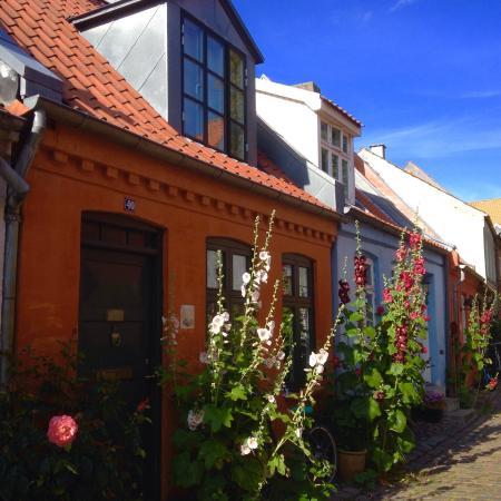 Latin Quarter : photo2.jpg