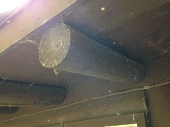 สวอนตัน, แมรี่แลนด์: Entire house needs power washed from cobwebs