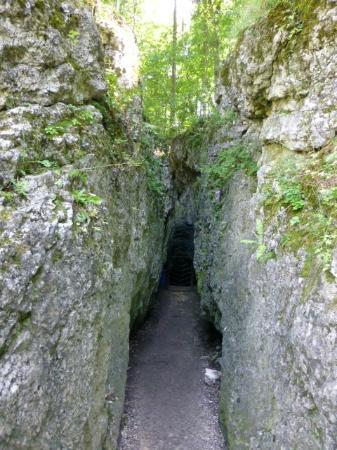 Grota Lokietka (King's Lokietek Cave)