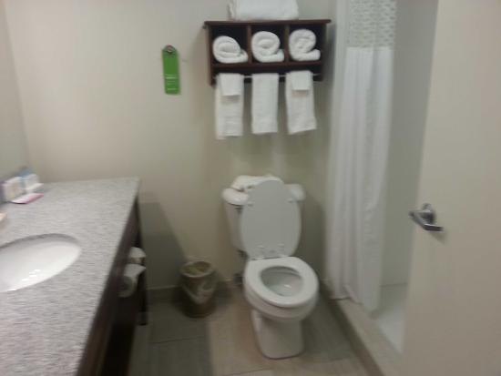 Hampton Inn & Suites Mooresville/Lake Norman: Bathroom