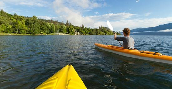 West Kelowna, แคนาดา: Kayak rentals and tours available.