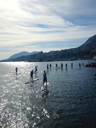 West Kelowna, Kanada: SUP rentals for groups too.