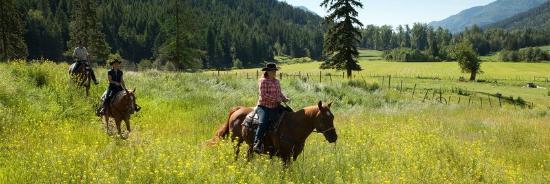 West Kelowna, Canadá: Dude ranch stays.
