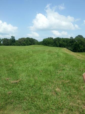 Natchez, MS: Emerald Mound