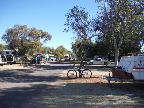 BIG4 MacDonnell Range Holiday Park: Trees for shade & as a family we like to stay near the quieter, smaller playground.