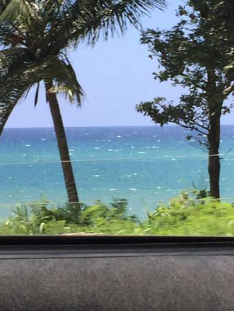 Hanover Parish, Jamaica: Leaving paradise...back to reality.