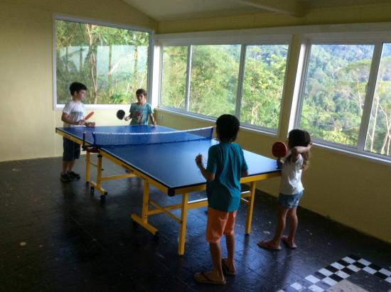Sinurambi Bed and Breakfast: Table tennis room