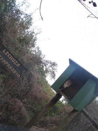 La Estacion de Cria de Fauna: reserva