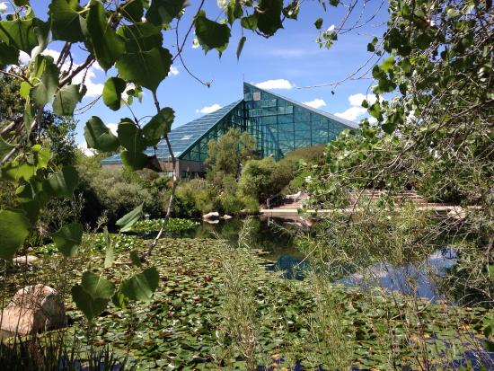 Picture of abq biopark botanic garden albuquerque tripadvisor for Botanical gardens albuquerque new mexico