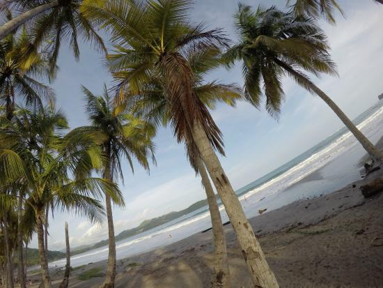 Hotel Sol Samara: Playa Carrillo