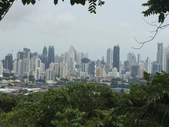 Wyndham Garden Panama City Picture