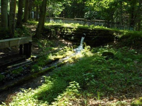 Raiun Shrine : 湧き水