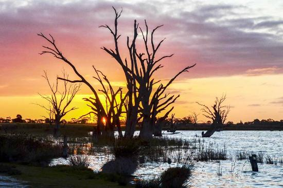 Discovery Parks - Lake Bonney : Sunset over the Lake
