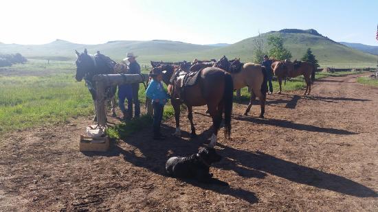 Badger Creek Ranch: Morning Ride