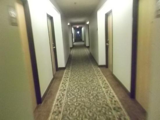 Baymont Inn & Suites San Marcos: pasillo del hotel