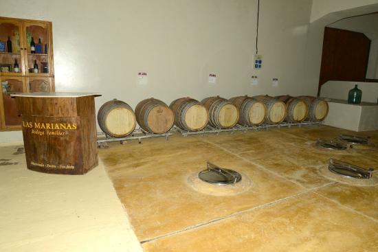 Bodega Las Marianas: sala de armazenagem dos tonéis de vinho
