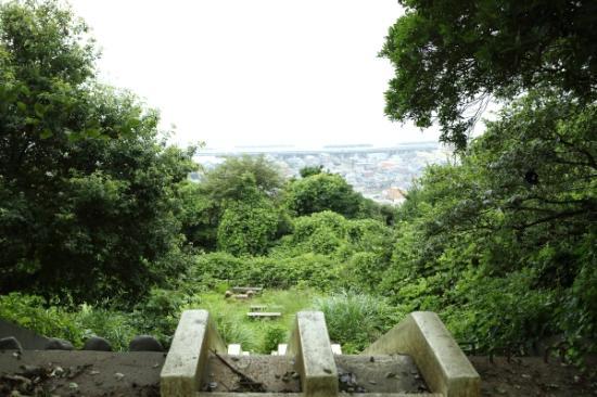 Gotenyama Mountain : 階段がありました