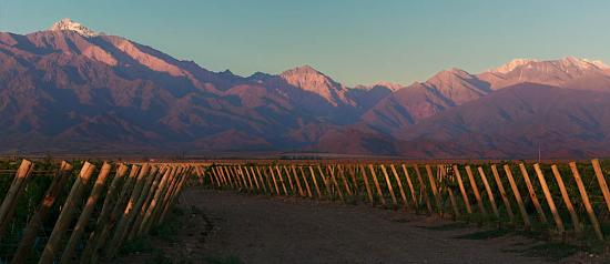 Wineries Tours Mendoza