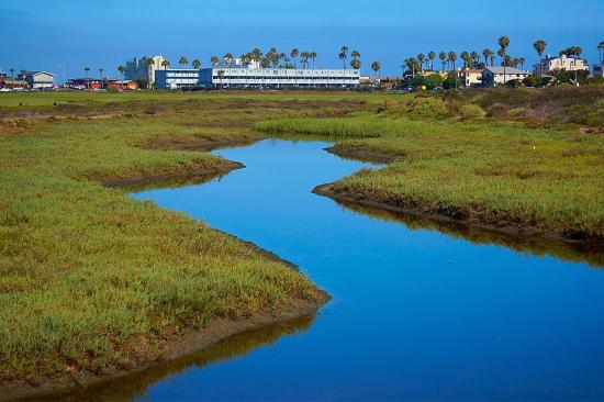 Imperial Beach, CA: The beautiful estuary.