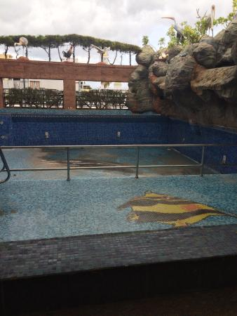 Parklane Hotel: THE POOL HAS NO WATER NOT MAINTAINED