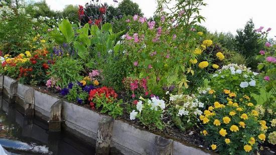 les hortillonnages damiens jardin fleuri - Jardin Fleuri
