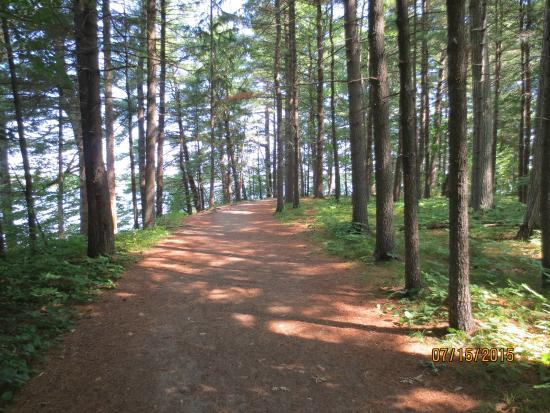 Mackworth Island: easy trail